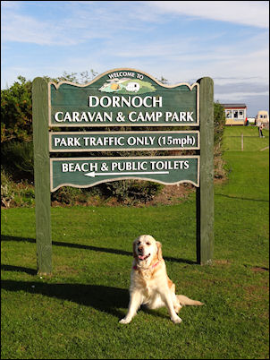Welcome to Dornoch Caravan and Camping Park